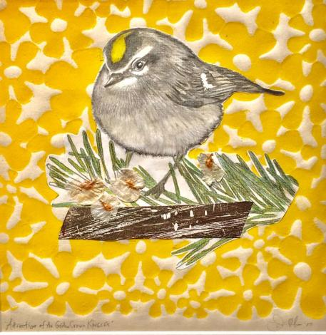 AttractionoftheGolden CrownedKinglet