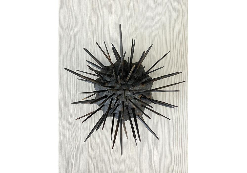 Sea Urchin, Black 2