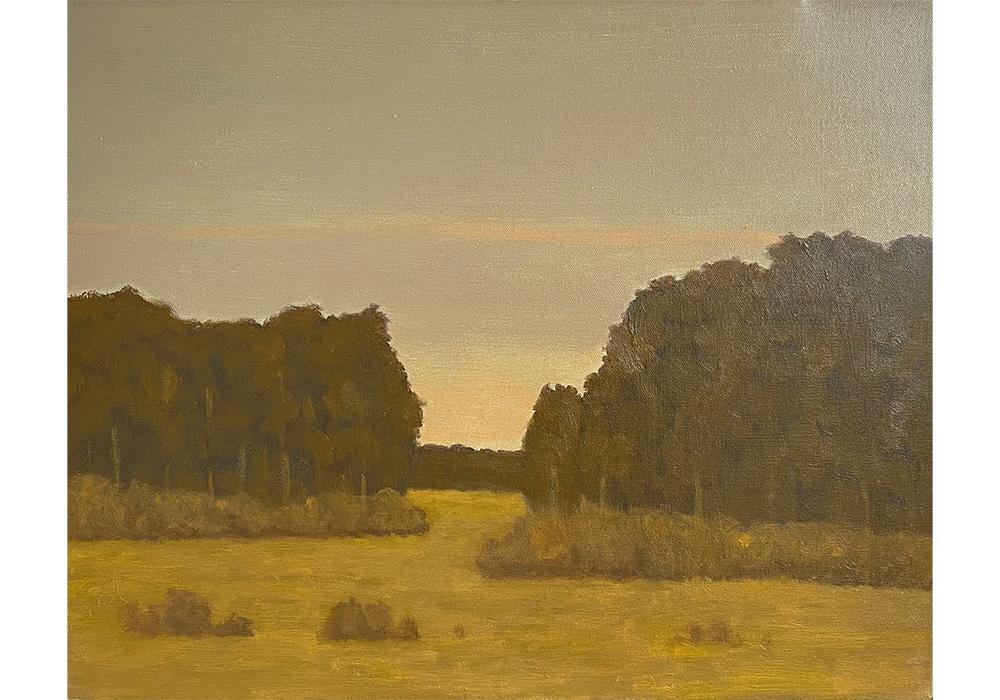 Evening Pasture 1