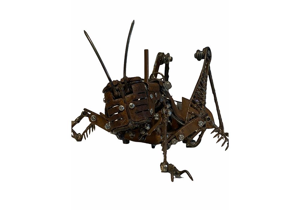 Locust 2 WR